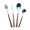 Cathylin stainless steel wooden color plastic handle flatware sets spoons knife fork cutlery